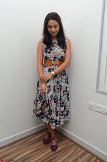 Miya George Looks Stunning in a Sleeveless Flower Print Gown at Yaman Movie Audio Launch Event Feb 2017 51.JPG