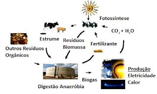 ciclo produção energia a partir diferentes fontes biomassa