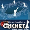 Cricket Games - Online Cricket game