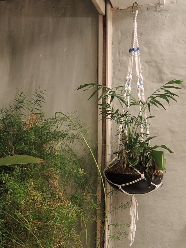 free macramé plant hanger tutorial