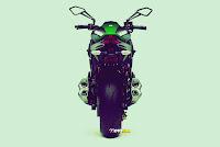 Kawasaki Z1000 2014 bodi belakang