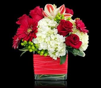 Last Minute Valentine's Day Flowers Boston