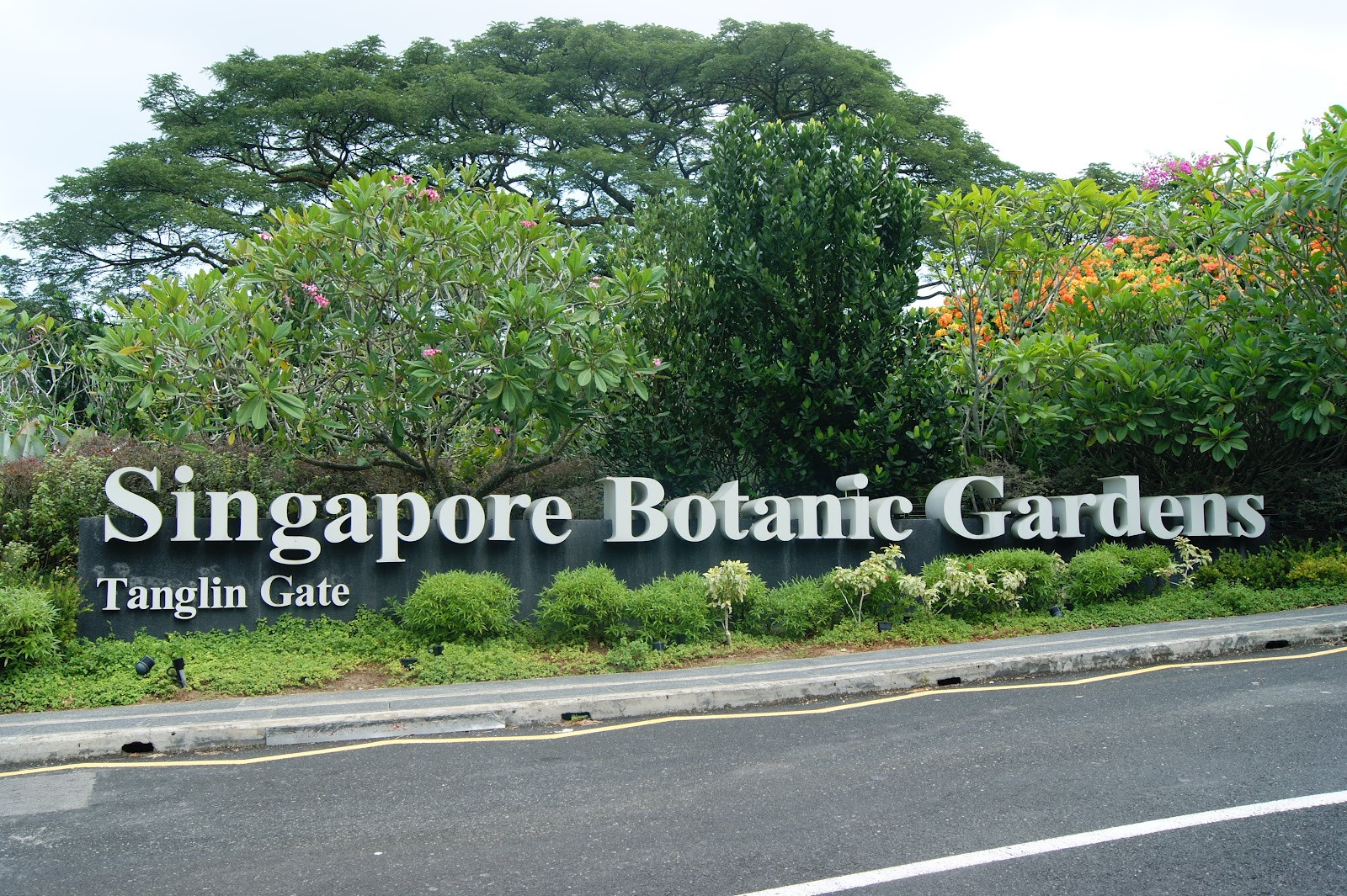 Numismatica banknote coin collecting unlisted for Au jardin singapore botanic gardens