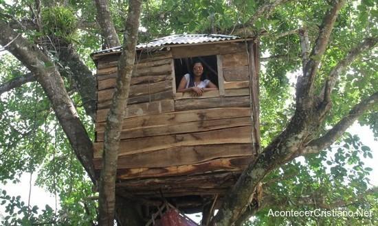 Casa en copa de un árbol