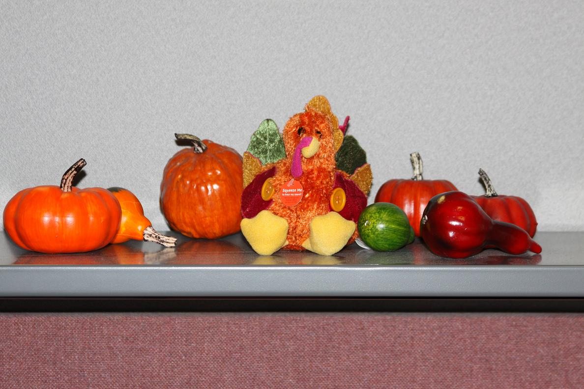 remarkable michigan exposures office thanksgiving decorations | Michigan Exposures: Office Thanksgiving Decorations