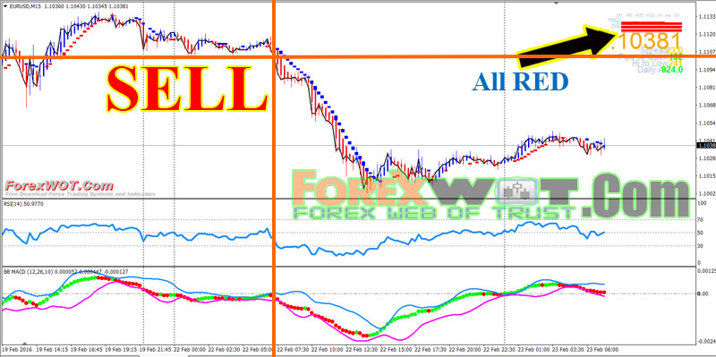 Forex about us