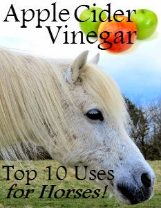 apple cider vinegar (ACV) for horses