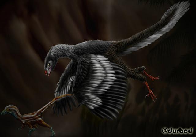 Archeopteryx.. Nenek Moyang Burung Yang Ditemukan Di Jerman
