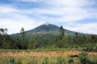 Jalur Pendakian Gunung Cikuray 2014