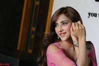 Angela Krislinzki Rogue Movie Fame Telugu Actress in Saree Backless Choli 003.JPG