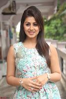 Nikki Galrani at Prema leela pelli gola trailer Launch ~  Exclusive 037.JPG