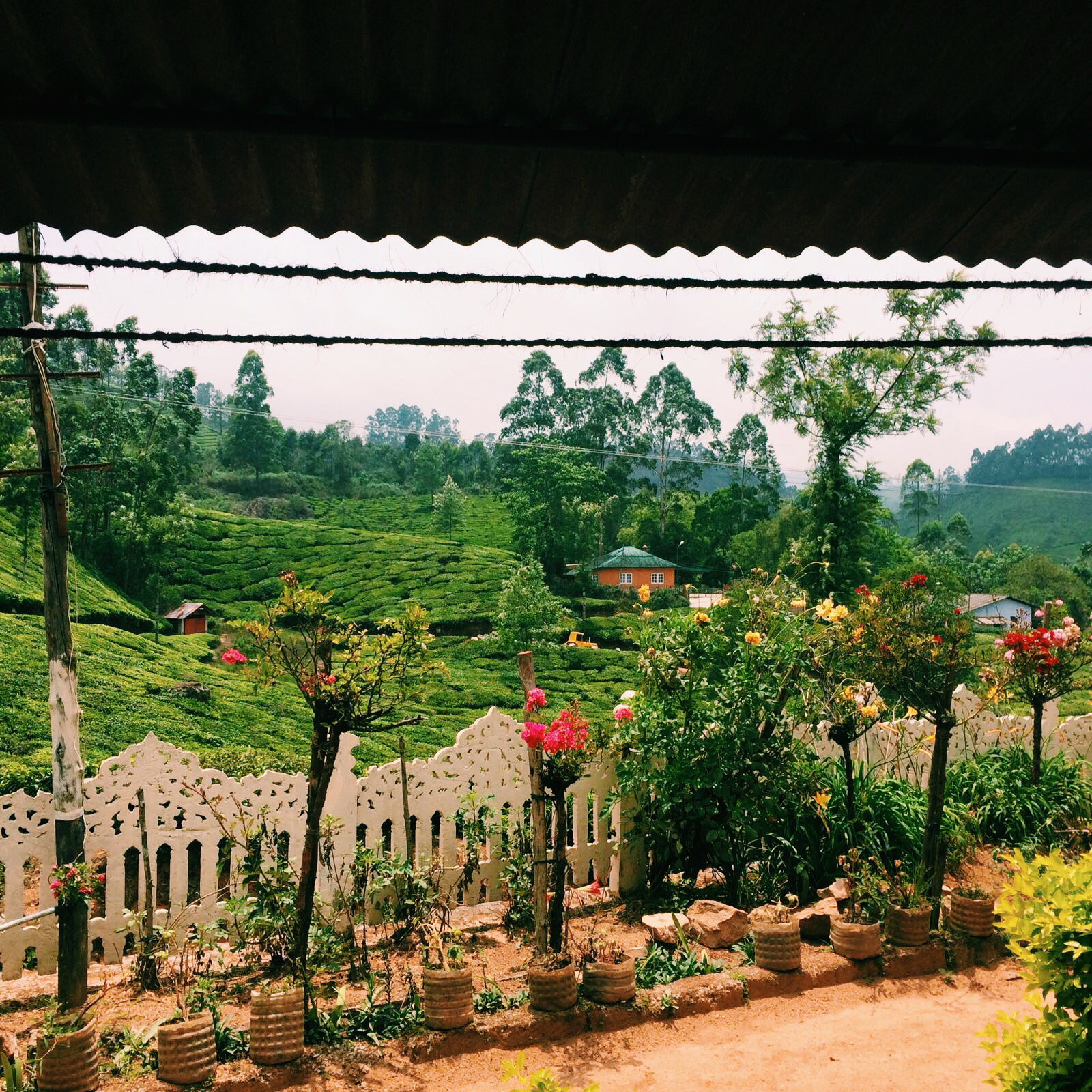 Homestay in Munnar, Kerala