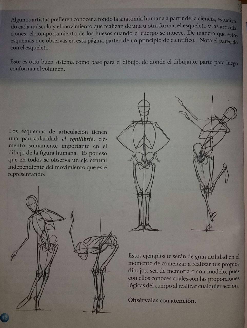 Perfecto Mejor Manera De Estudiar La Anatomía Músculos Adorno ...