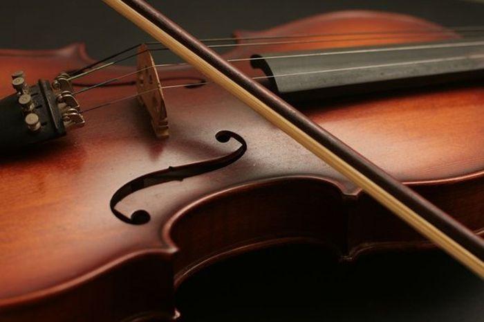 Kisah Tragis di Balik Pencurian Biola Stradivarius