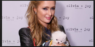 Paris Hilton Biography Facts