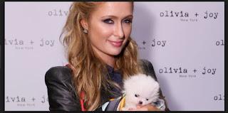 Paris Hilton Biography Facts