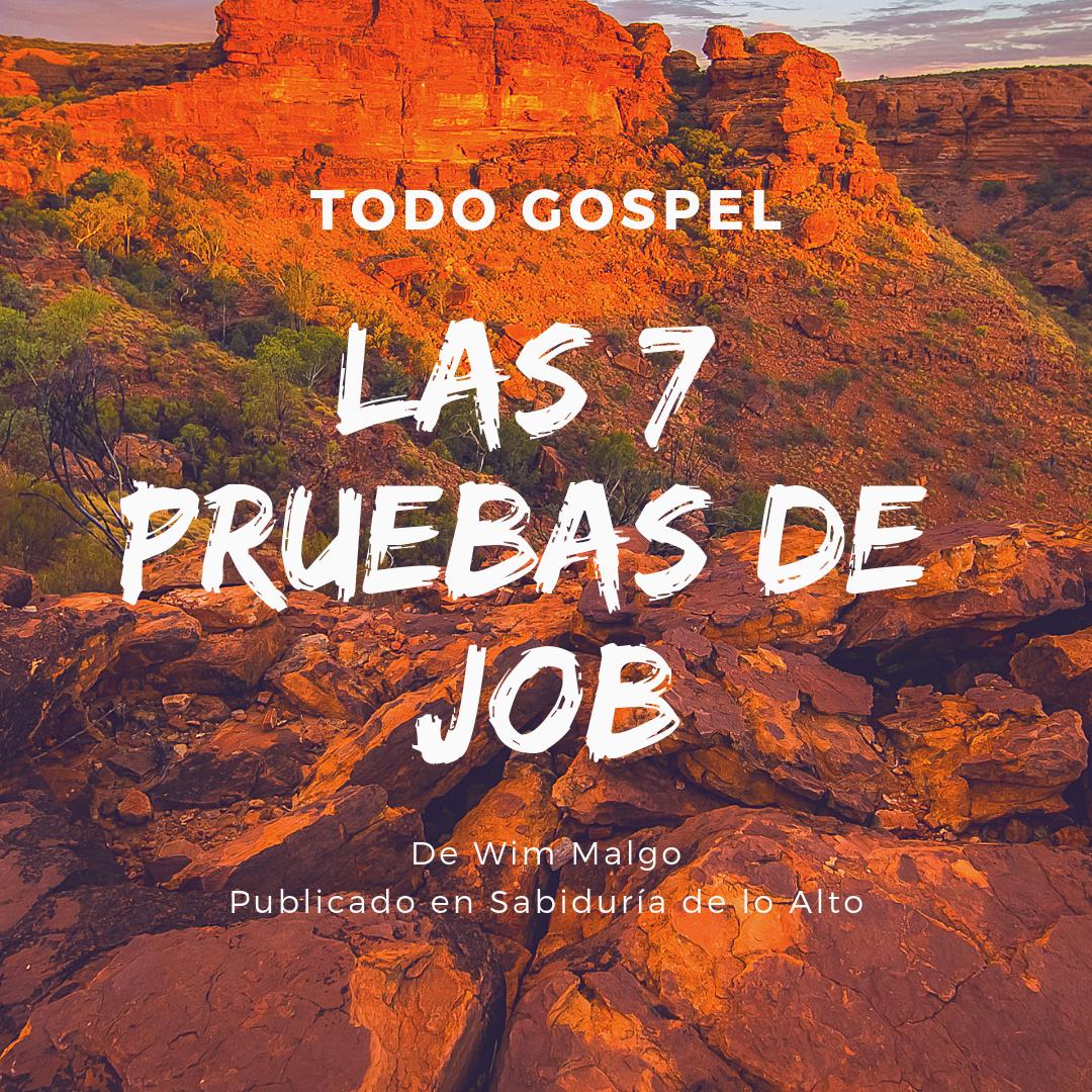 Las 7 Pruebas De Job Sabiduría De Lo Alto