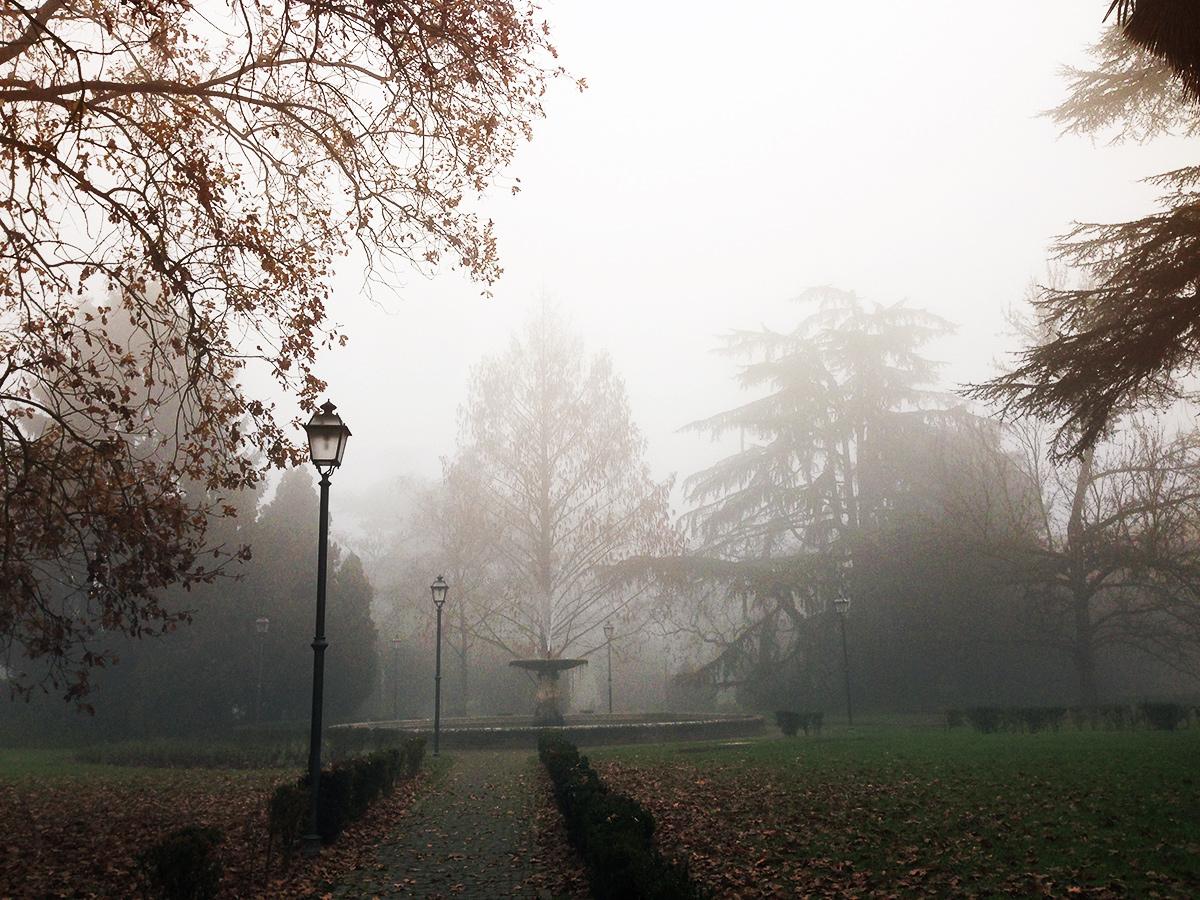 marco massari nebbia ferrara