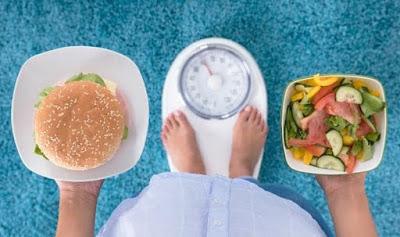 Program Diet Nasa