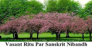 वसंत ऋतु पर संस्कृत निबंध। Vasant Ritu Par Sanskrit Nibandh