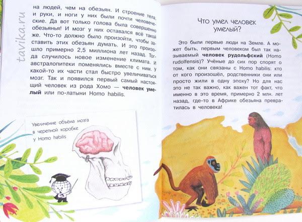 Откуда взялся человек. Научно-популярная книга для детей