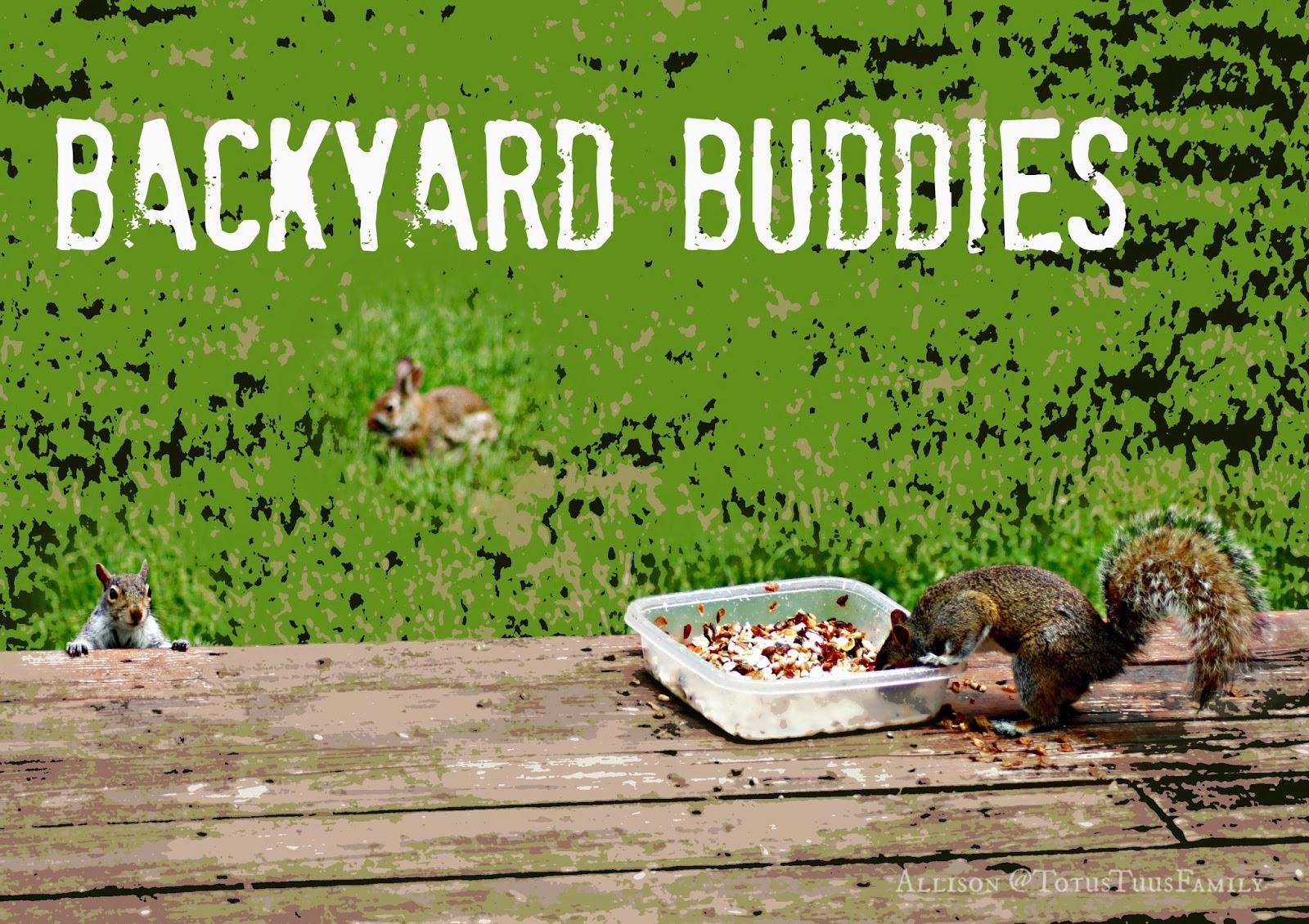 Theme Thursday - Animals ... Squirrel Feast! - Totus Tuus ...