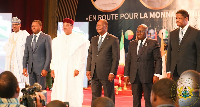 ECOWAS leaders to accelerate process for common currency by 2020