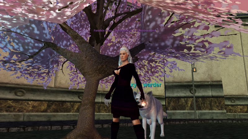 ECTmmo com- MMO Blog: The Adventures of Kaozz   : 7/1/11 - 8/1/11