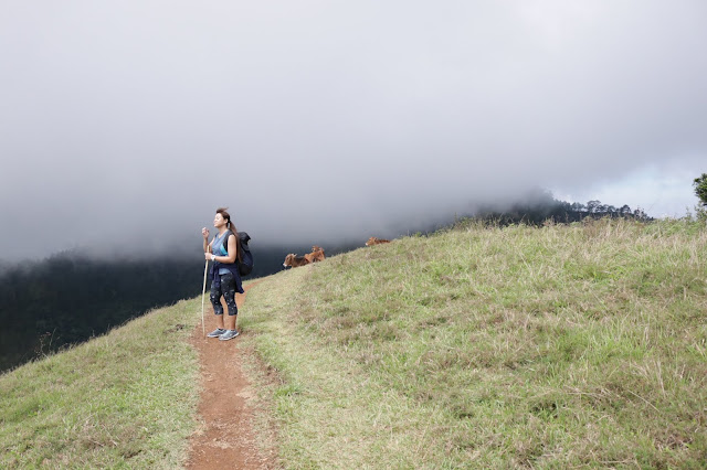 Mt. Ulap. An Exhilarating Experience With My Team Mates