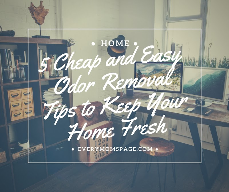 5 Cheap and Easy Odor Removal Tips to Keep Your Home Fresh