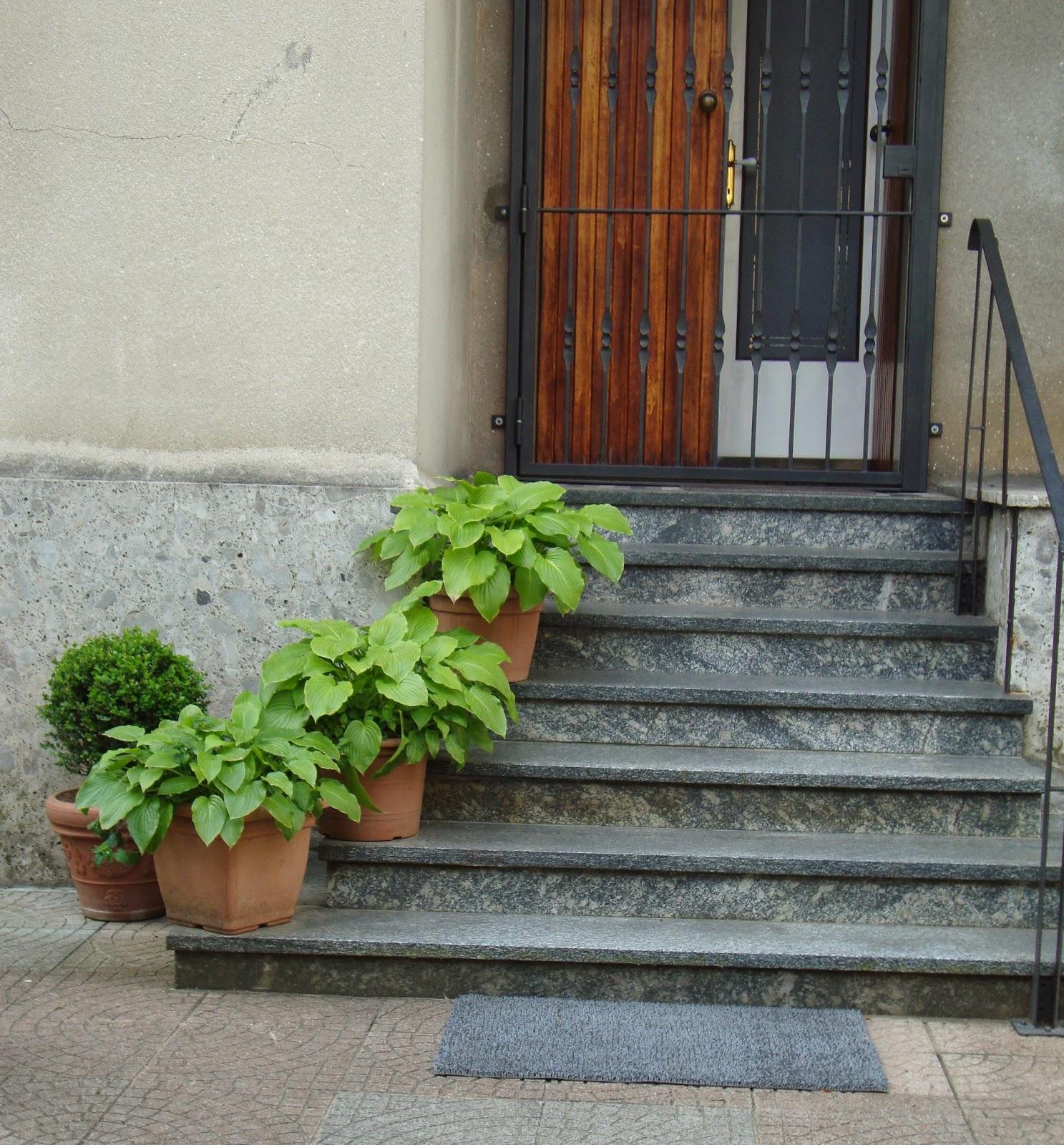 Un piccolo giardino in citt fiori e piante sulle scale - Gradini in cemento per esterno ...