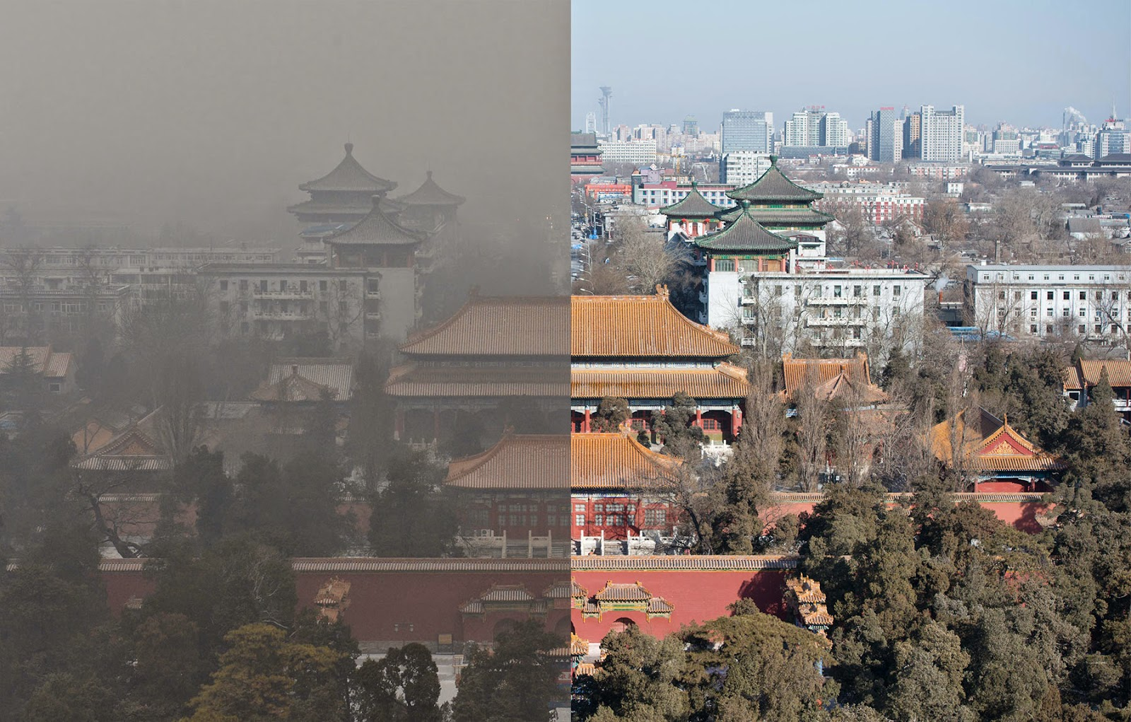 write a article on environmental pollution in china