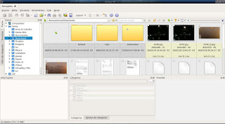Xnview melhor gerenciador de imagens