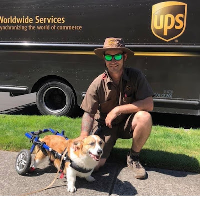 Let Us Give Thanks to UPS... and UPS Dogs