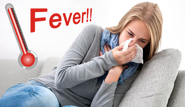 fever or flu