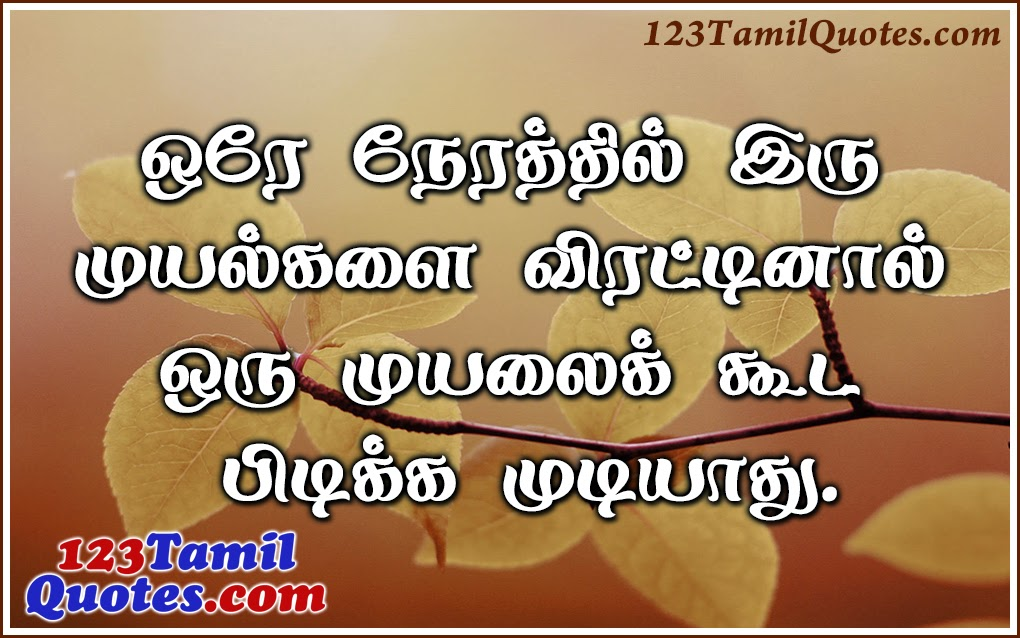 Love Quotes In Tamil Friendship Life Motivational Sad