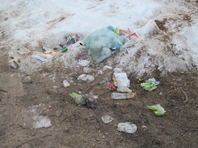 подснежники - мусор из под снега