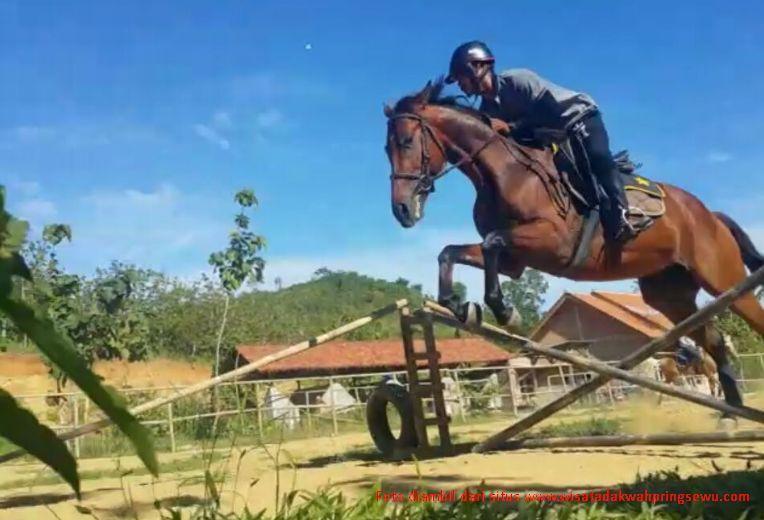 Serunya Wisata Berkuda di Pringsewu Lampung