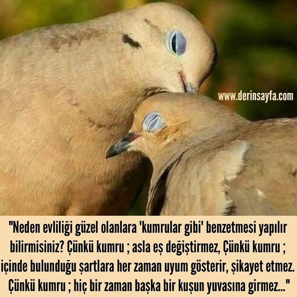 Güzel mesajlar aşk