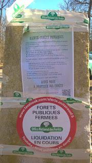 Protestations  des forestiers de l'ONF en forêt de Fontainebleau