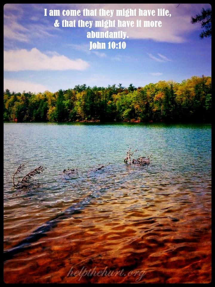 Livin' On Sweet Tea & Jesus: The Good Shepherd