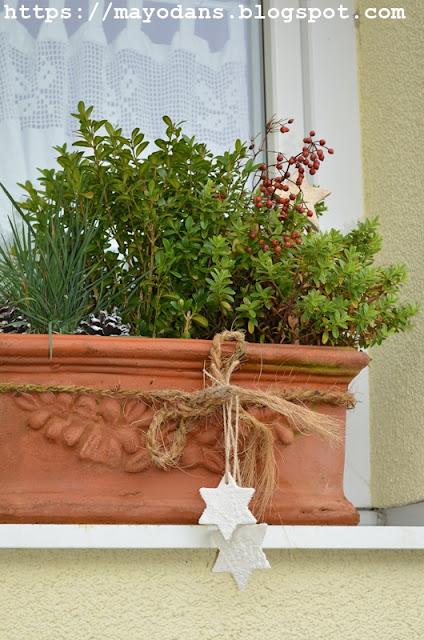 Blumenkasten im Winter
