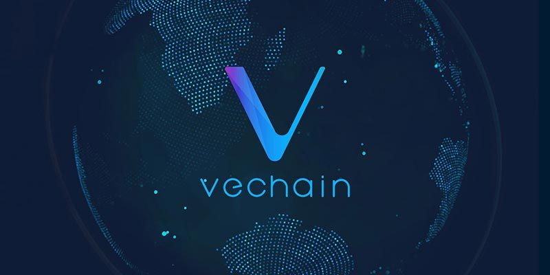 VeChain the biggest crypto