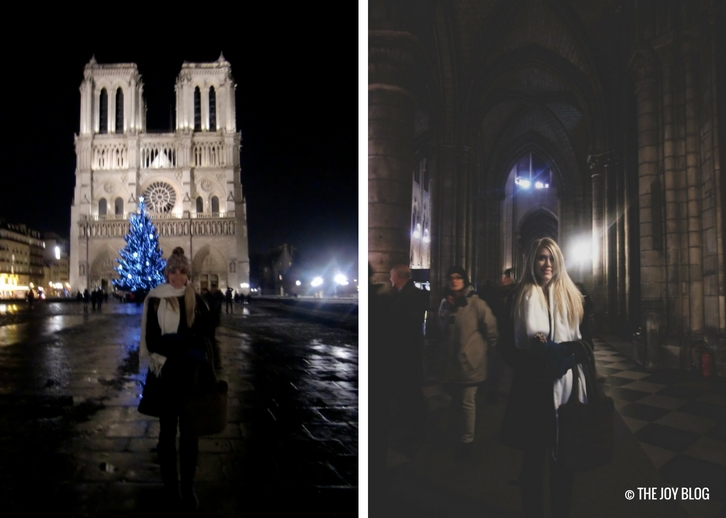 Notre Dame Cathedral | That One Time I Went to Paris // WWW.THEJOYBLOG.NET