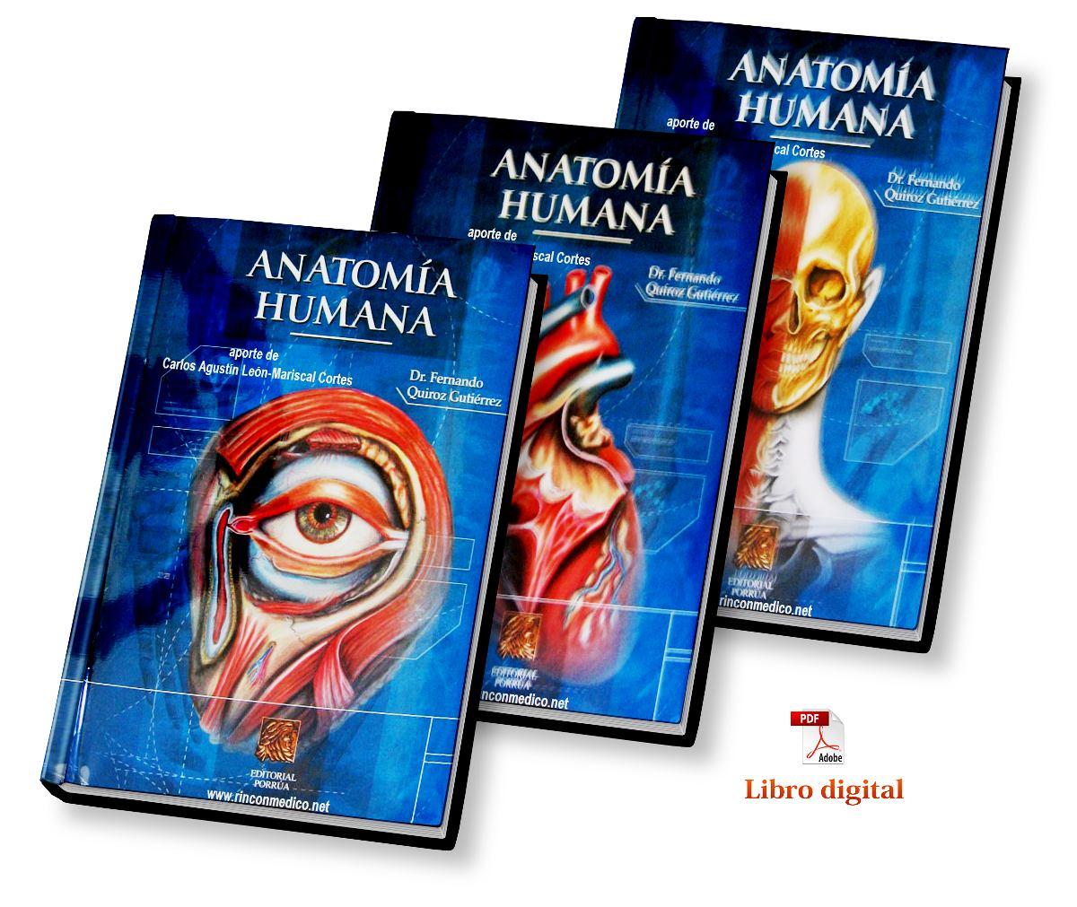 Atractivo Anatomía Y Fisiología Marieb Pdf Galería - Anatomía de Las ...