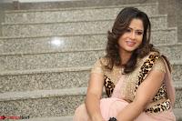 Shilpa Chakravarthy in Lovely Designer Pink Saree with Cat Print Pallu 045.JPG