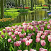Taman Bunga Nusantara di Bogor Destinasi Utama Wisata Bunga