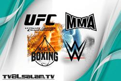 Watch UFC Streams