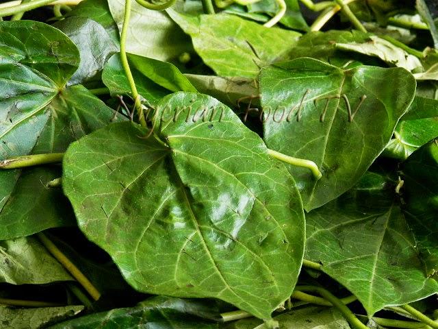 Utazi leaves Otazi leaves (Gongronema latifolium), Difference Between Okazi(Ukazi),Utazi, and Uziza leaves