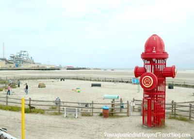 The BEST Oceanfront Dog Park in Wildwood, New Jersey